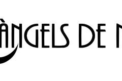 logo_text_angels_de_nit_2017
